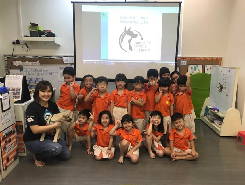 CAS Education Programs - Causes for Animals (Singapore